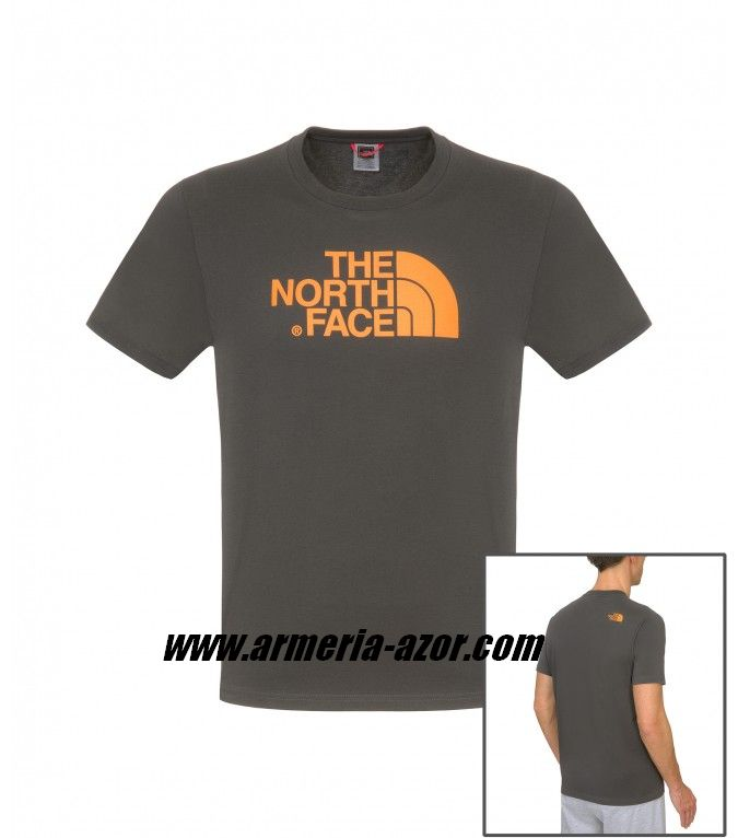 Camiseta The North Face Asphalt Grey